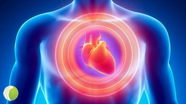 Quatro em cada cinco infartos em homens podem ser evitados